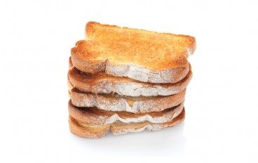 toast stack-web